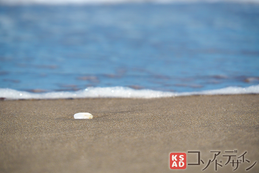 海岸の景色その4